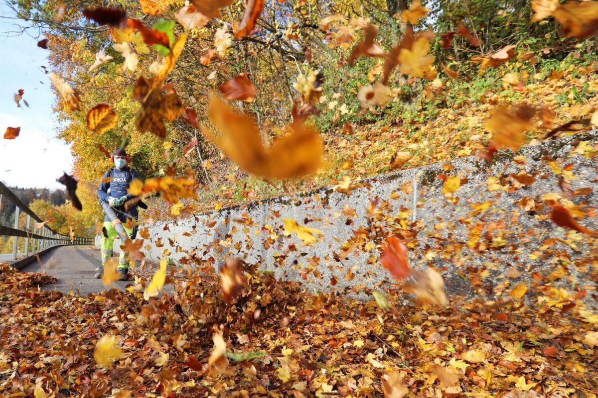 Lá vàng rơi nhiều nên công nhân dùng máy thổi để gom lá trên lối đi bộ ở gần vùng Stallikon, Thụy Sĩ. Để ngắm trọn vẹn vẻ đẹp của Thụy Sĩ mùa thu, du khách có thể đến thành phố Lucerne, Zurich hay trải nghiệm tàu ngắm cảnh Golden Pass. Ảnh: Reuters.